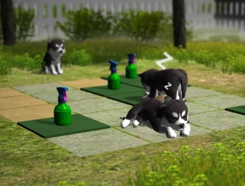 Забавные щенки (Pup Place)